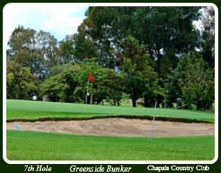 Included in general Golf Terms: Greenside Bunke
